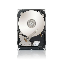"Hard Disk 3,5"" interno 2000GB Sata III 7200 Rpm Seagate ST2000DM001"